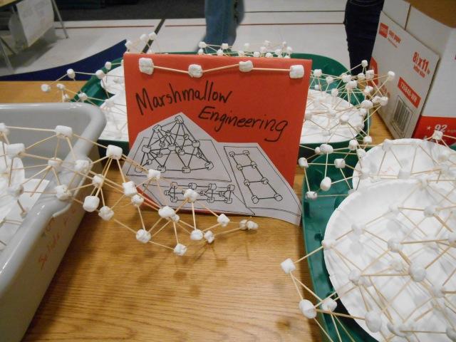 School Science Fair Night